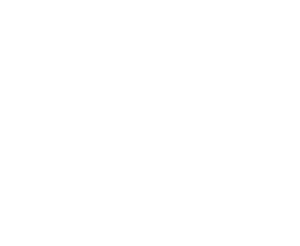 GPO German Precision Optics