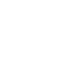 Gator Waders